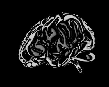 Soraya_brain.jpg
