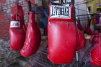 boxinggloves.jpg