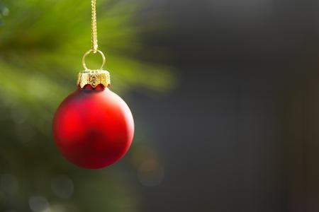 one_ornament.jpg