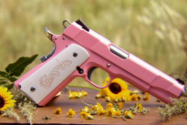 pink_gun__discovery_